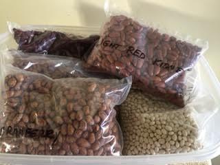 6 varieties of beans