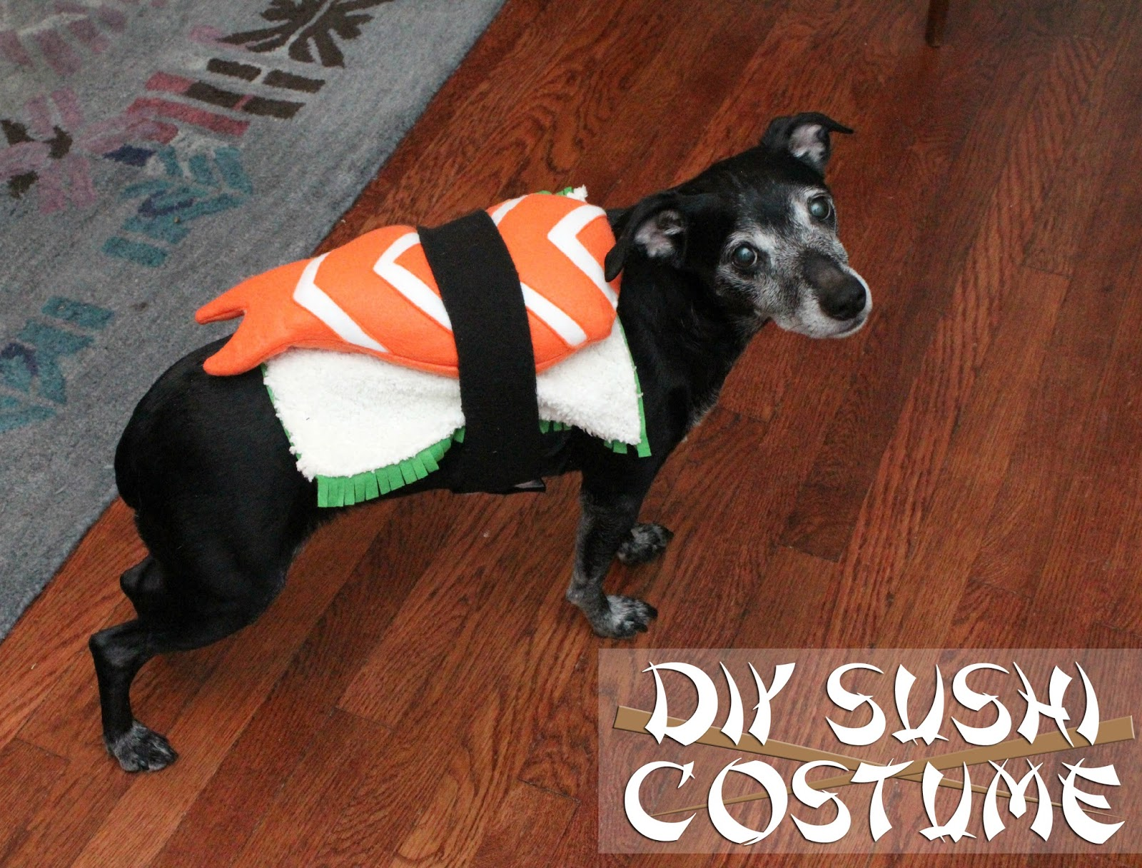 Can you believe Halloween is in 3 days?? My kids have already gotten over a pound of candy each from a parade and church event we attended this weekend ... & EAT+SLEEP+MAKE: DIY Sushi Costume for a Dog
