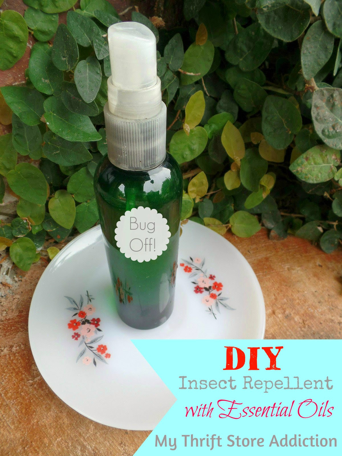 DIY Essential Oil Insect Repellent