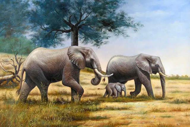 tranh sơn dầu voi