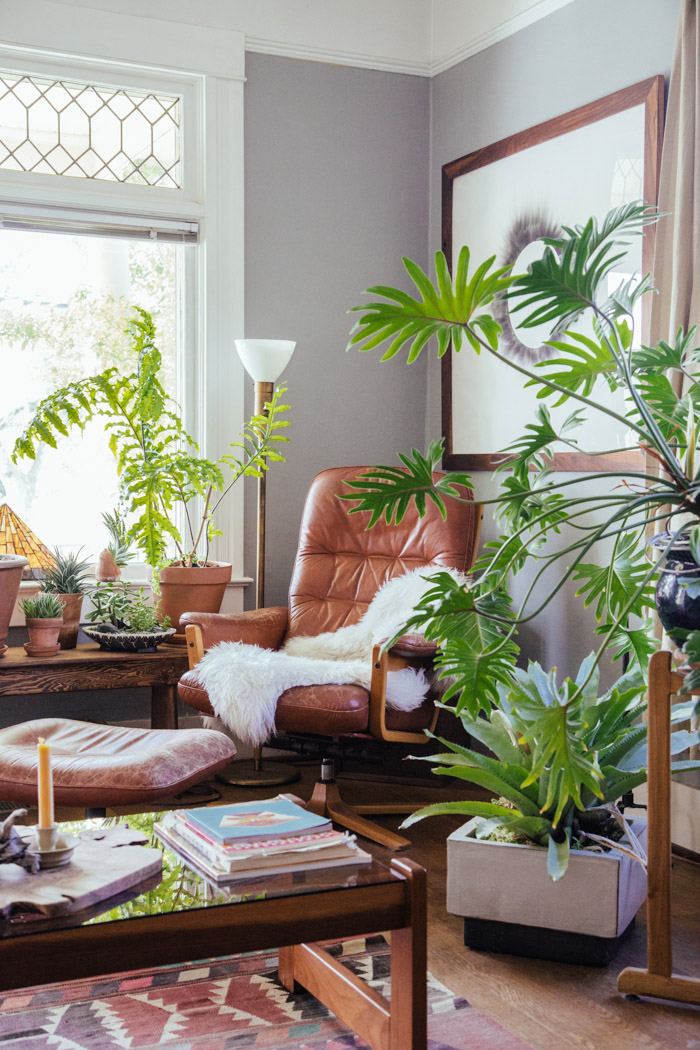decoracao de interiores sao joao da madeira: Plantas em alta na decoração!! – Jeito de Casa – Blog de Decoração