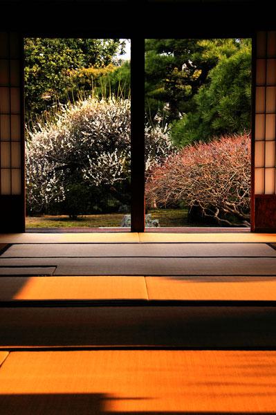 Tatami, Usuki temple, Kyushu, Japan