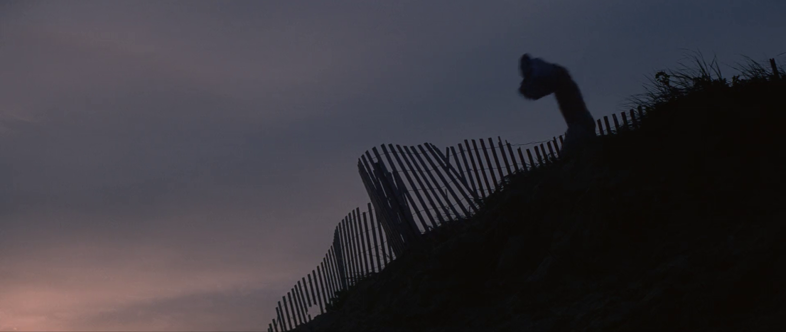 and so it begins jaws a visual essay on why continuity doesn the shot that ends the chase sequence begins cassidy at the top of a dune note the gray sky