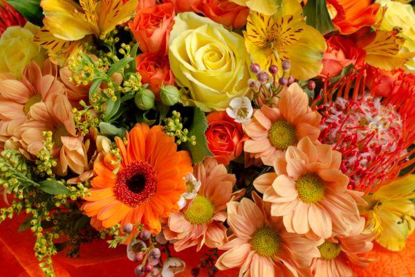 Buchete cu flori de toamna