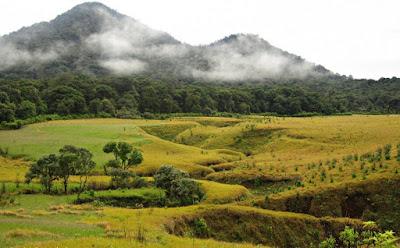 Foto-Foto Indahnya Tegal Panjang Gunung Papandayan
