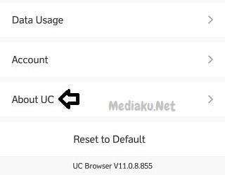 Cara Perbarui Versi UC Browser