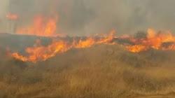 Hỏa Hoạn bùng cháy trên khắp miền Nam Israel trong những ngày nghỉ của lễ Đền tam