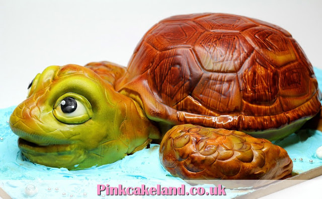 Turtle 3D Birthday Cake in London