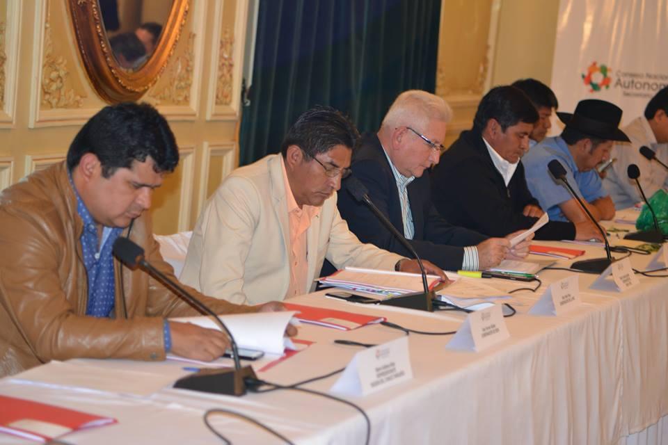 Servicio Estatal de Autonomías deberá elaborar el documento final