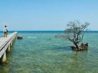 Wisata Pantai Pulau Panjang Jepara, Surga Sunset yang Menawan