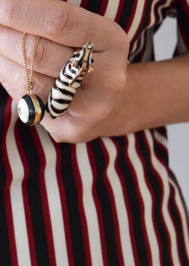 Ring mit Zebra