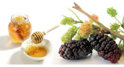 Bài thuốc đơn giản trị viêm gan mãn tính từ quả dâu tằm