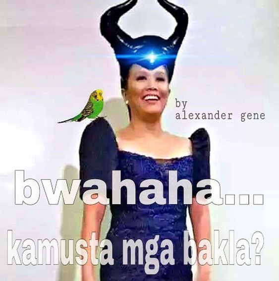 Nancy Binay SONA 2015 meme