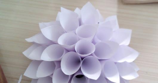 Bahja mohammed google paper cone flower mightylinksfo