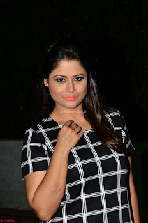 Shilpa Chakravarthy in Dark blue short tight dress At Srivalli Movie Pre Release Event ~ Exclusive Celebrities Galleries 032