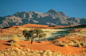 """Gurun Kalahari"""