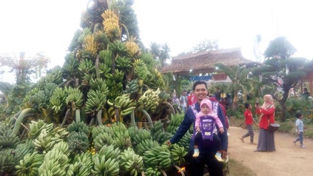 Pameran tanaman banyuwangi
