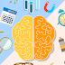طريقة عمل الدماغ البشري – الفرق بين الجانب الأيمن والأيسر