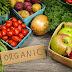 Perbedaan Tanaman Organik, Hidroponik dan Konvensional