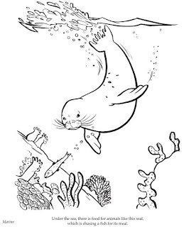 Cute Seals Swim At Sea Coloring Sheet