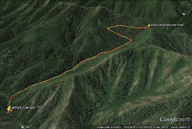 Lambs Canyon trail map, Utah