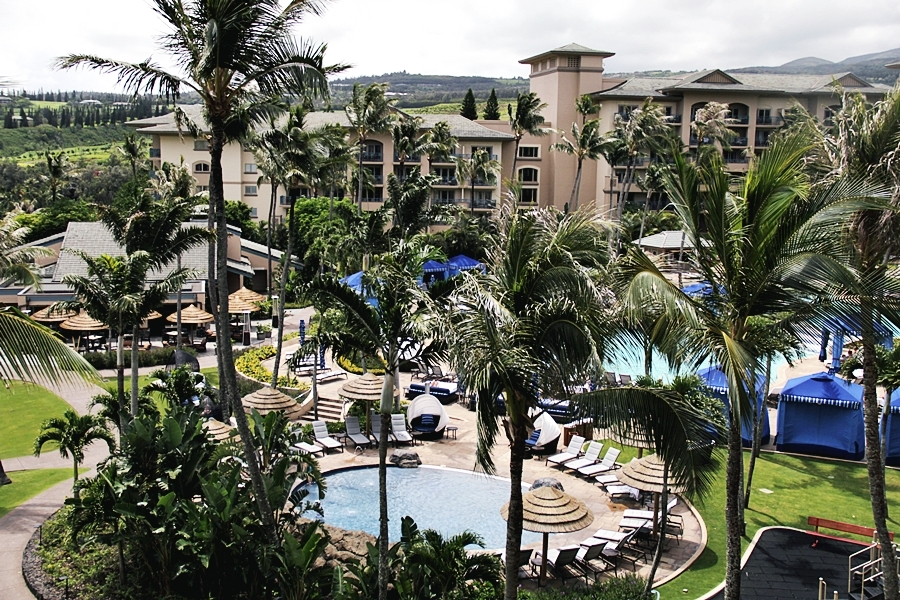 ritz carlton pool maui