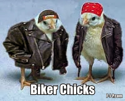 Hilarious two chicks dressed up as bikers image