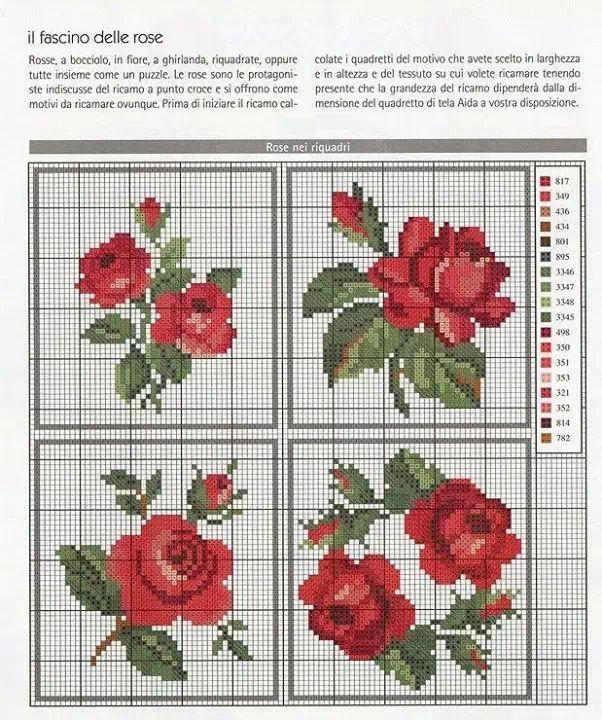 Imagenes De Rosas En Punto De Cruz Imagui