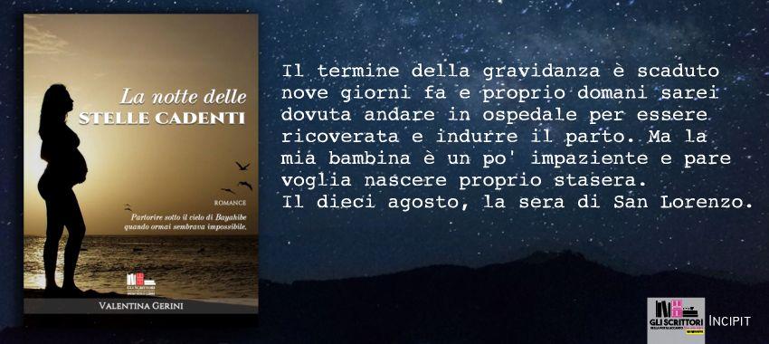 La notte delle stelle cadenti, di Valentina Gerini: incipit