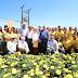Paraná tem o reconhecimento do agronegócio brasileiro e mundial
