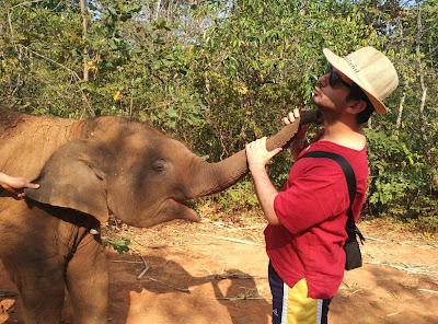 Pachi durante su voluntariado con elefantes en Tailandia.