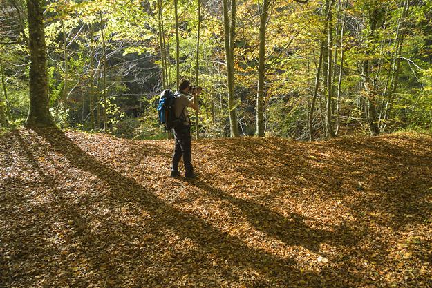 fotografiar en la naturaleza nos lleva a entrar en contacto con la problemtica ambiental