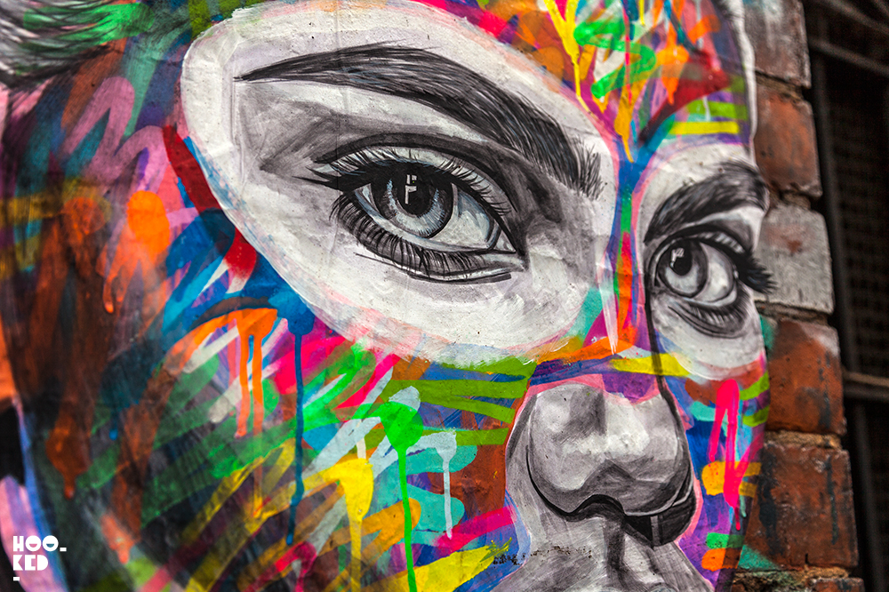 Close up detail of Street Artist Ant Carver's Vibrant work.
