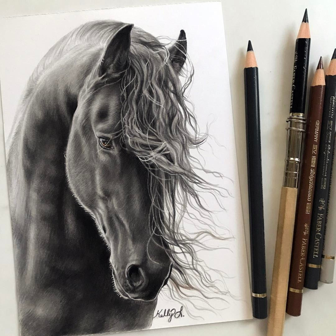 06-A-horse-with-a-good-hair-day-Kelly-Lahar-Realism-with-Animal-Portrait-Drawings-www-designstack-co