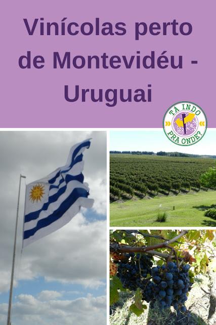Vinícolas para visitar perto de Montevidéu (Uruguai)