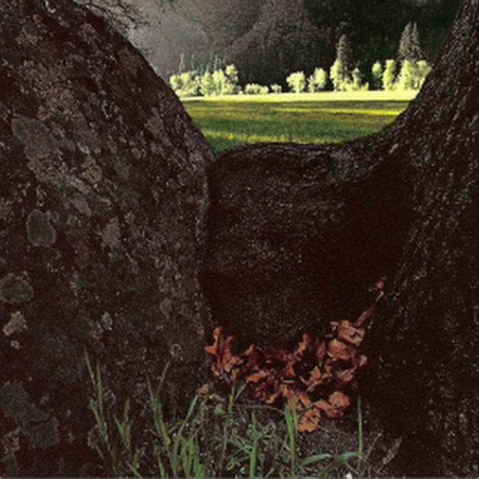 Jared Fairfield - 2010 - Mysteries