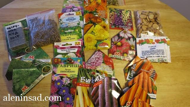 аленин сад, семена, сорта укропа, моркови, календулы, бобов, астры, кориандра, петрушки, для посева в апреле, в открытый грунт, холодостойкие сорта, культуры