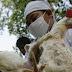 الصحة العالمية توضح مخاطر انفلونزا الطيور بين البشر
