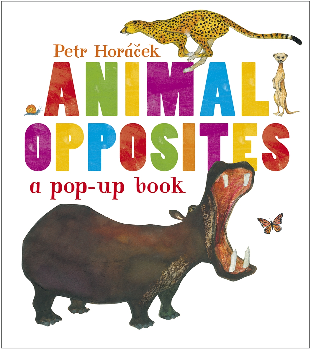 Mellow Mummy Childrens Book Review Animal Opposites By
