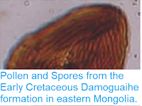 https://sciencythoughts.blogspot.com/2014/05/pollen-and-spores-from-early-cretaceous.html
