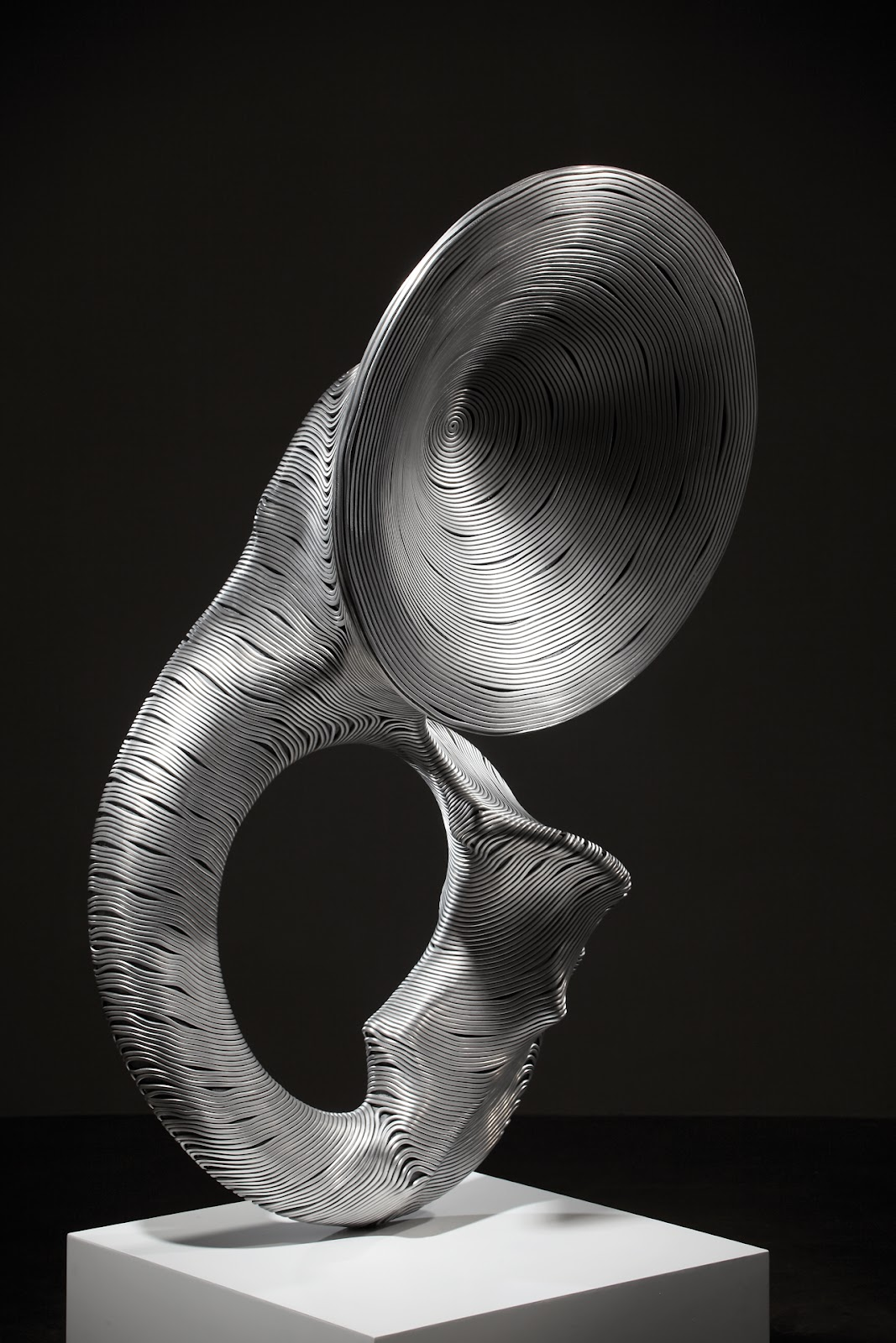 15-Sousaphone-Park-Seung-Mo-South-Korean-Artist-&-Sculptor-Wire-Sculpture-www-designstack-co