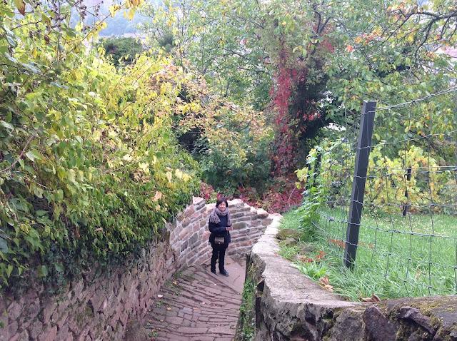 Caminho dos Filósofos (Philosophenweg), em Heidelberg, Alemanha