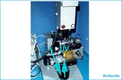 Le microscope à fluorescence