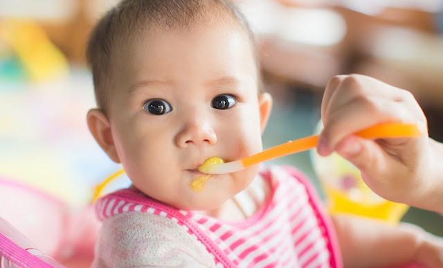 Bubur untuk Bayi Usia 6 Bulan