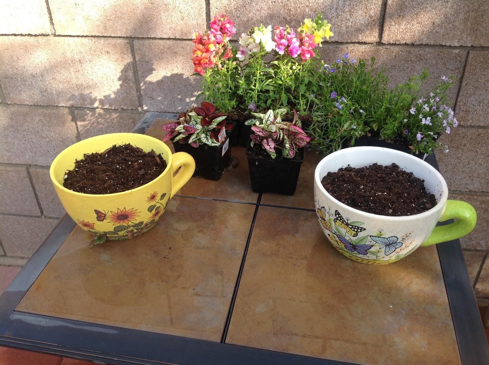 Grandma\'s Enchanted Fairy Garden: Fairy Garden Class - Teacups in ...