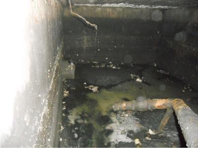 Fosas septicas tratamientos de agua for Como hacer una laguna