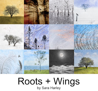 Roots and Wings Series by Sara Harley