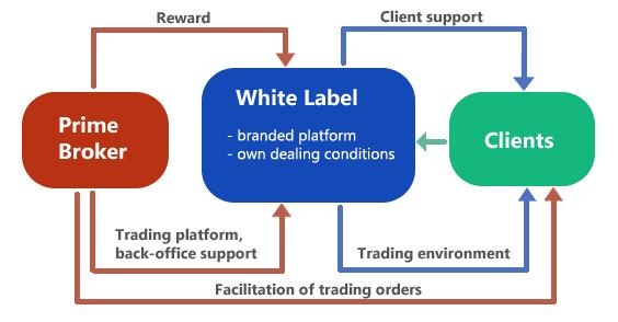 Best forex white label program