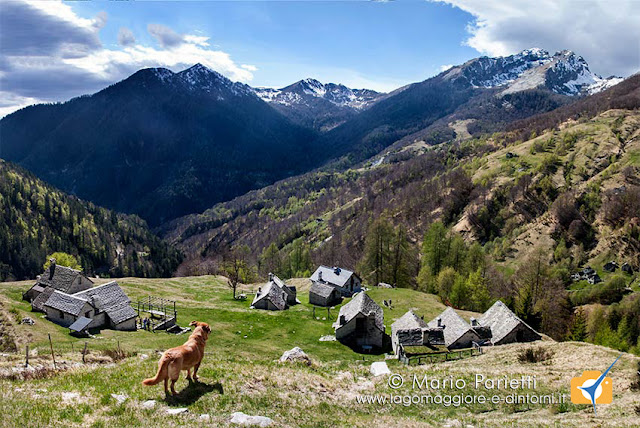 Valle Vigezzo panorama alpe Cortina