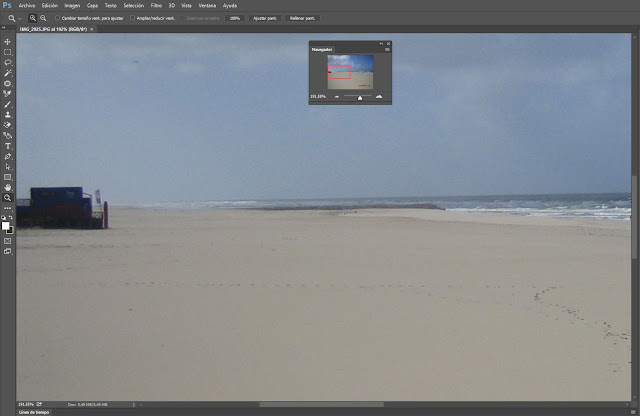 Zoom de recuadro del área de imagen de trabajo en Photoshop